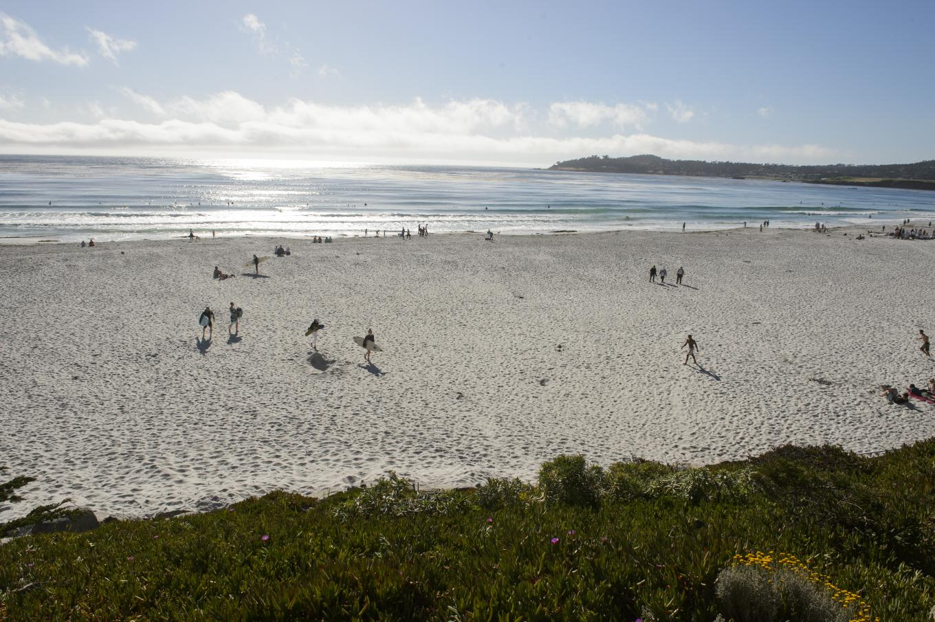 Carmel Beach visitors