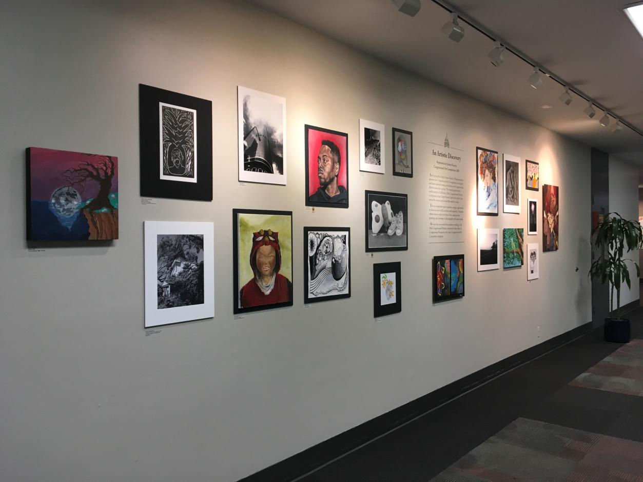 Youth Gallery - Spring 2018 - Jimmy Panetta's Congressional Art Competition